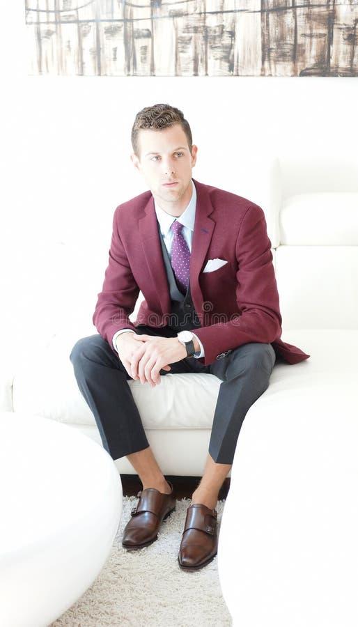 Mâle adulte portant un Bourgogne et un Grey Suit image libre de droits