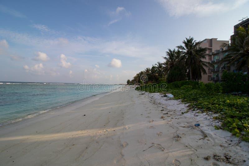 Mâle, bord de mer Maldive images stock