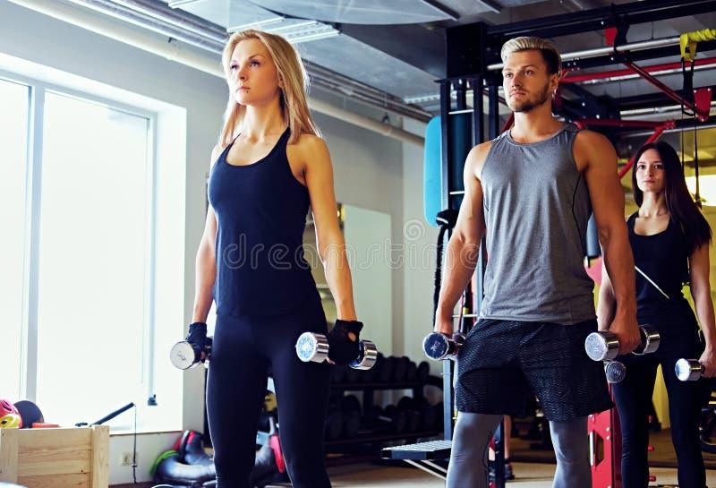 Mâle sportif et deux modèles femelles minces de forme physique faisant des exercices d'épaule avec des haltères images stock