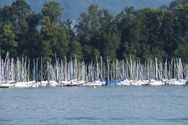 Mât et voilier et vagabonds en luzerne de lac en Suisse avec un fond d'une forêt dans le temps de jour photos libres de droits
