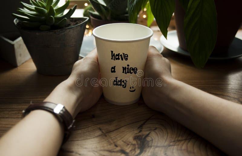 Mädchen hält heißen Kaffee in ihren Händen vor dem hintergrund eines schönen hölzernen Fensterbretts Ein gemütliches Cafékonzept lizenzfreie stockbilder