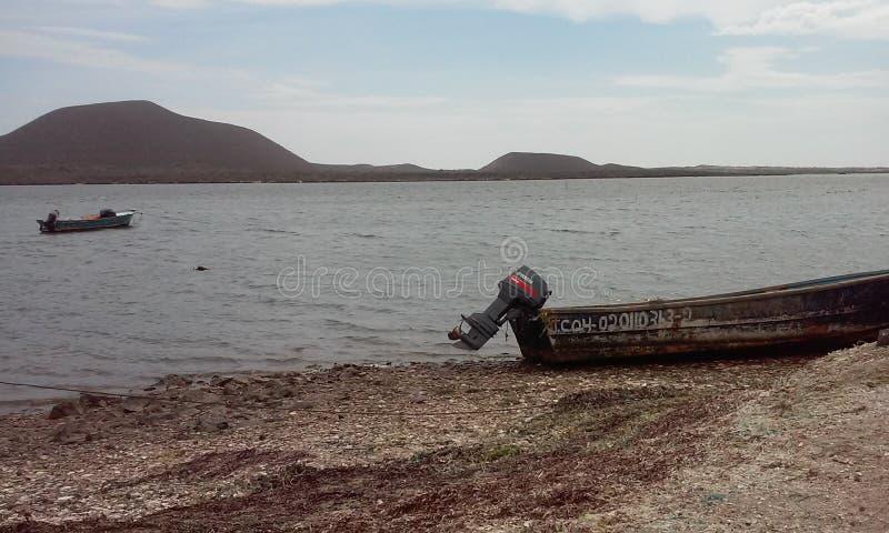 México市海滩  免版税库存照片
