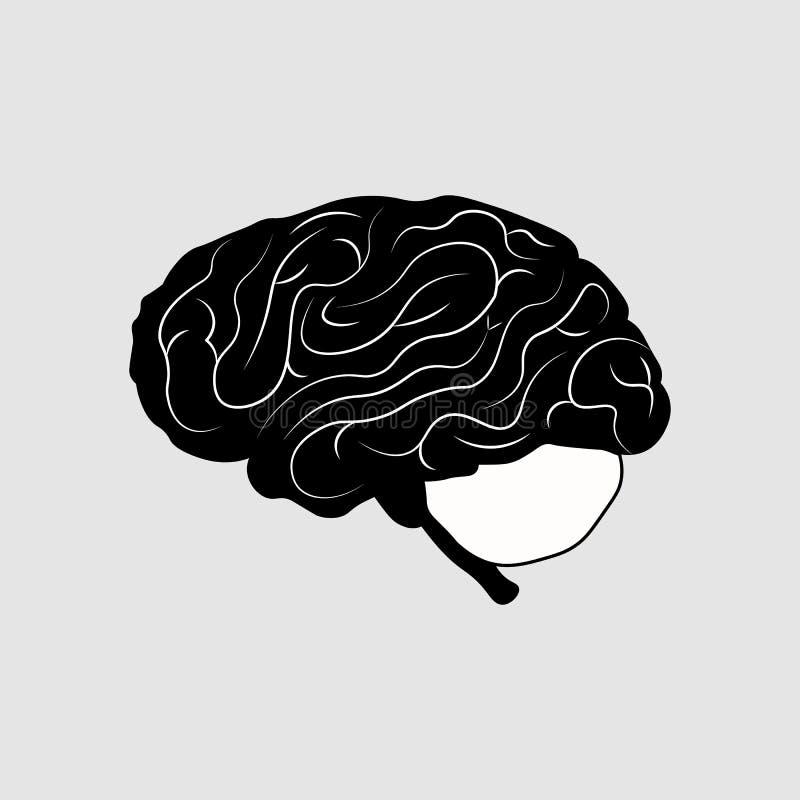 Mózg lub umysłu boczny widok l wektorowa ikona dla medycznych stron internetowych ilustracja wektor