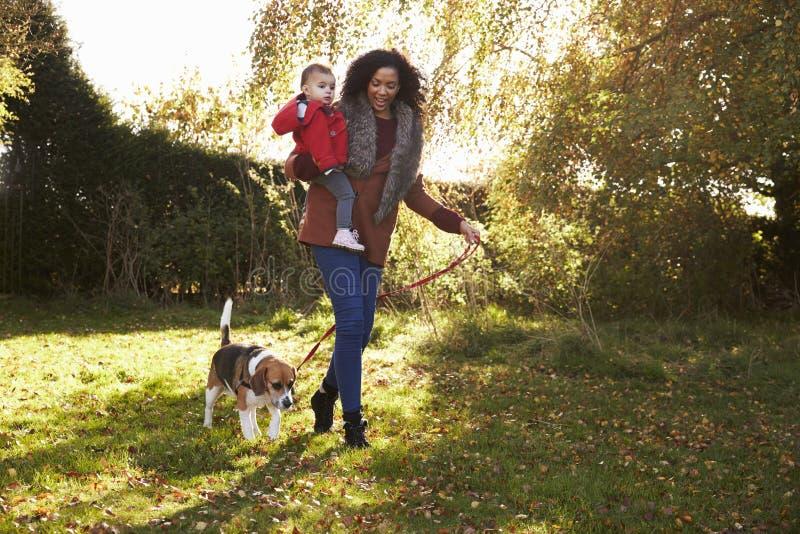 Mãe com a criança que toma o cão para a caminhada em Autumn Garden fotografia de stock