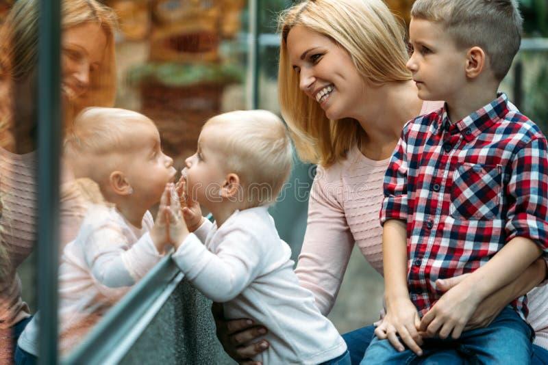 Mãe com a menina e o menino que olham através da janela da loja fotografia de stock royalty free