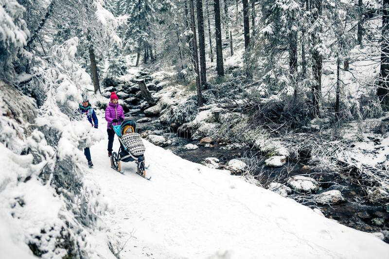 Mãe com o carrinho de criança de bebê na floresta do inverno, tempo da família das mulheres do reboque imagem de stock royalty free