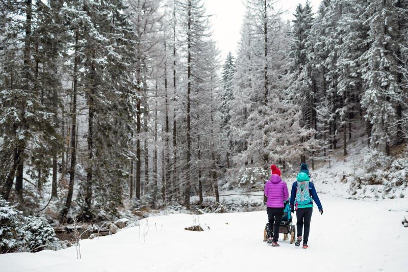 Mãe com o passeante de bebê que aprecia a maternidade na floresta do inverno foto de stock