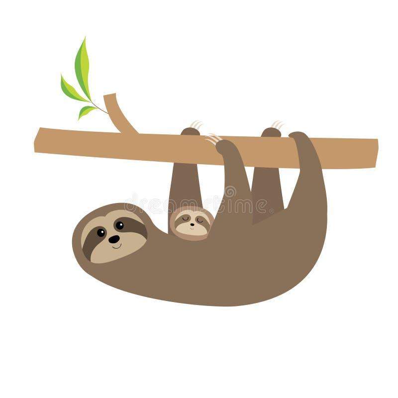 Mãe da preguiça com bebê Personagem de banda desenhada bonito Coleção selvagem do animal da selva do ramo de árvore ilustração stock