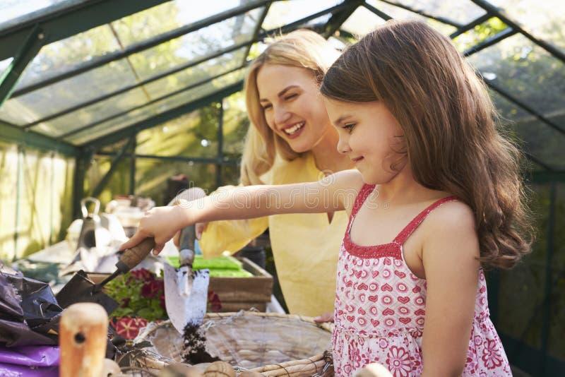 Mãe e filha que plantam a cesta de suspensão na estufa fotos de stock