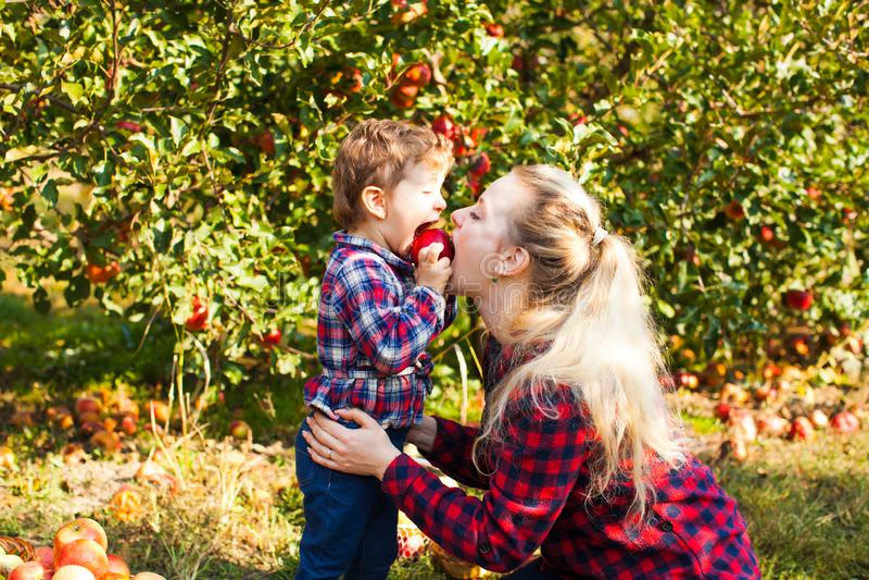 A mãe e a filha são mordida um a maçã imagens de stock