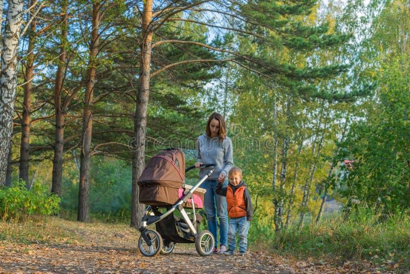 Mãe e filhos que andam nas madeiras do outono imagens de stock royalty free