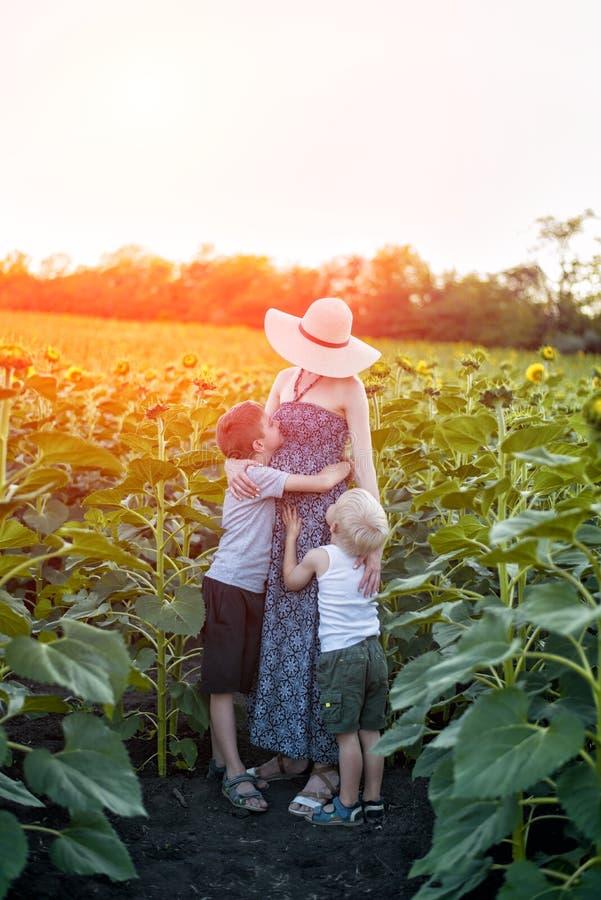 Mãe grávida feliz que abraça dois poucos filhos no campo ensolarado de girassóis de florescência Quadro vertical imagens de stock royalty free