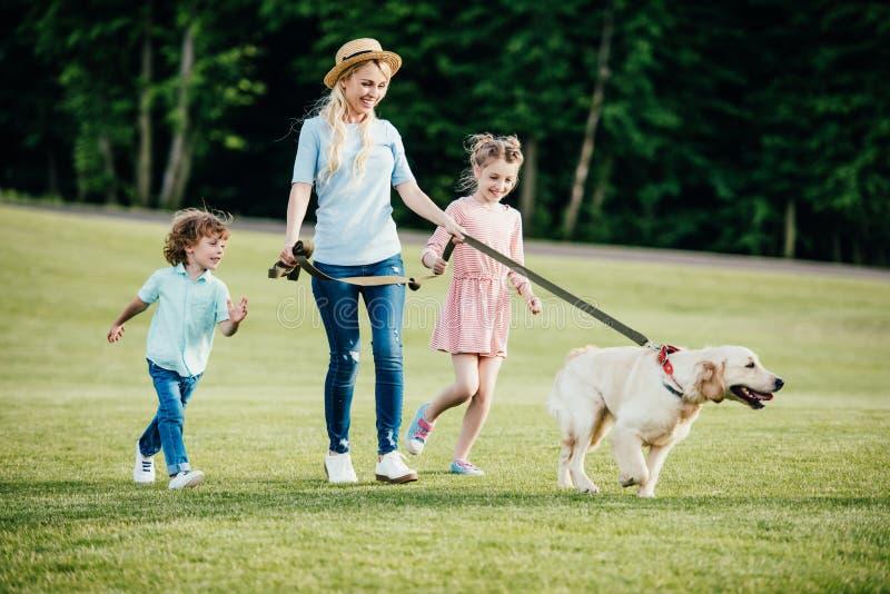 mãe nova feliz com crianças adoráveis e passeio do cão fotografia de stock royalty free