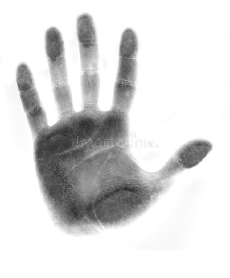Mão ilustração royalty free