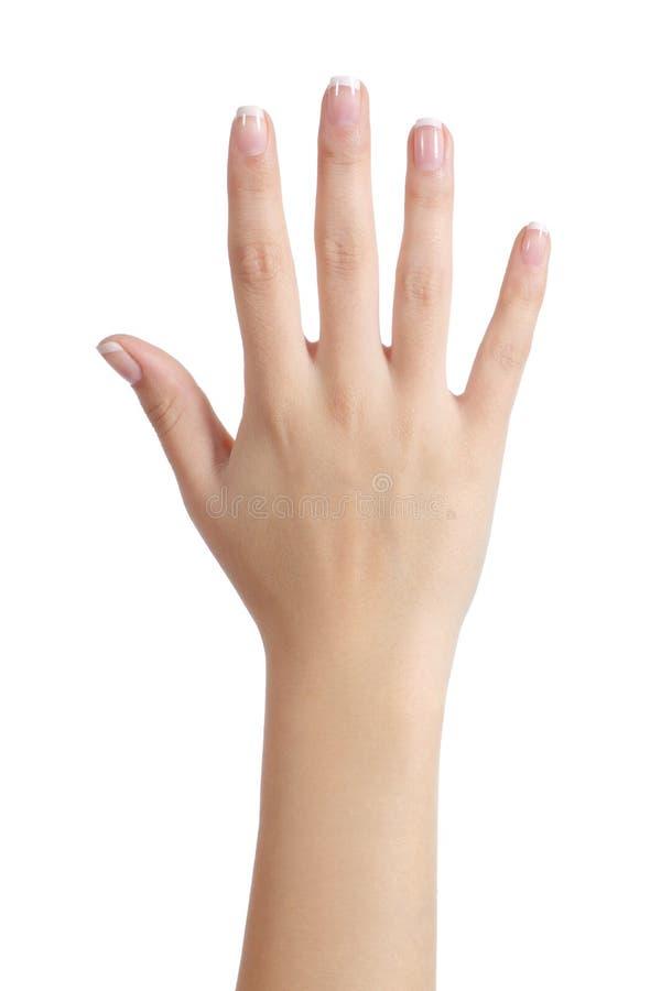 Mão aberta da mulher com tratamento de mãos francês imagem de stock