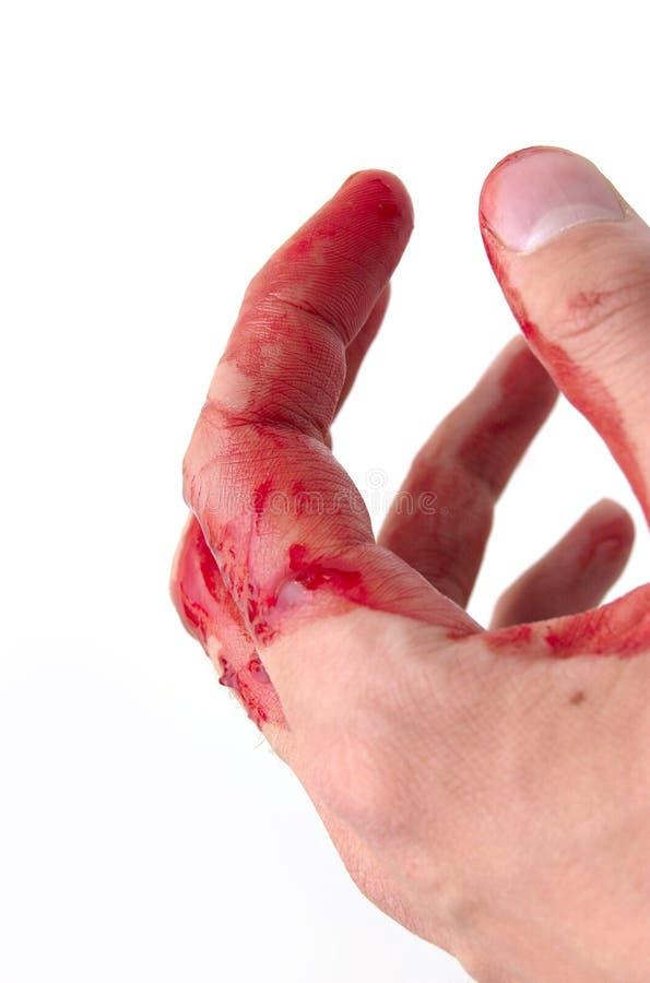 Mão & sangue foto de stock royalty free