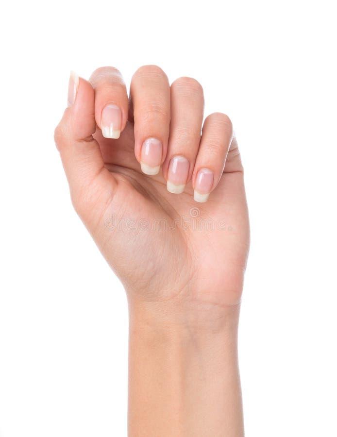 Mão bonita da mulher com os pregos manicured francês foto de stock