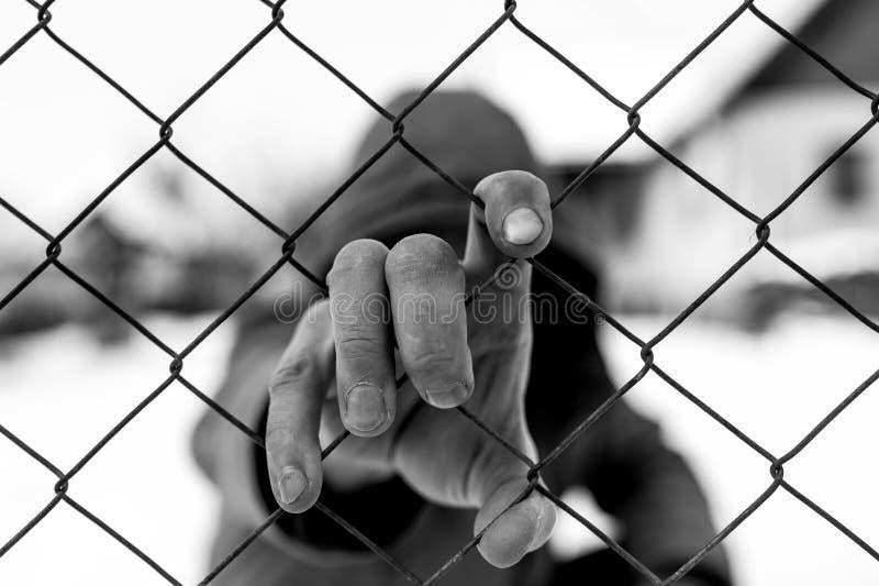 Mão caucasiano do homem que guarda a cerca de fio no instituto correcional fotos de stock