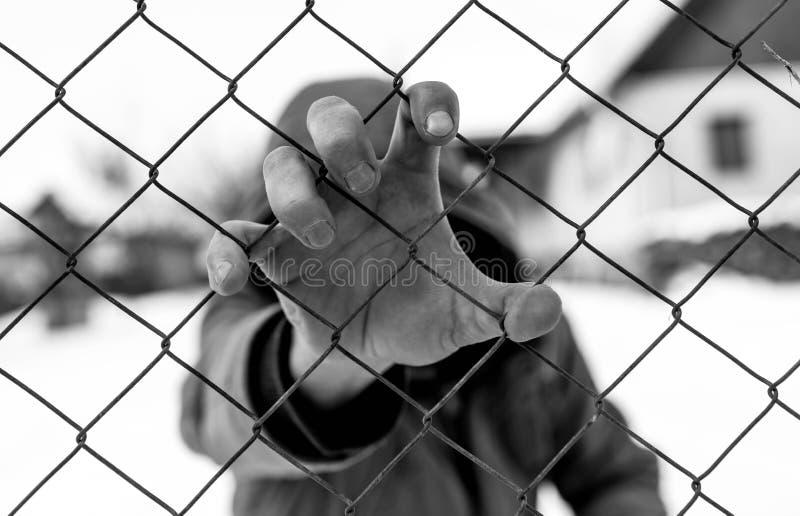 Mão caucasiano do homem que guarda a cerca de fio no instituto correcional fotos de stock royalty free