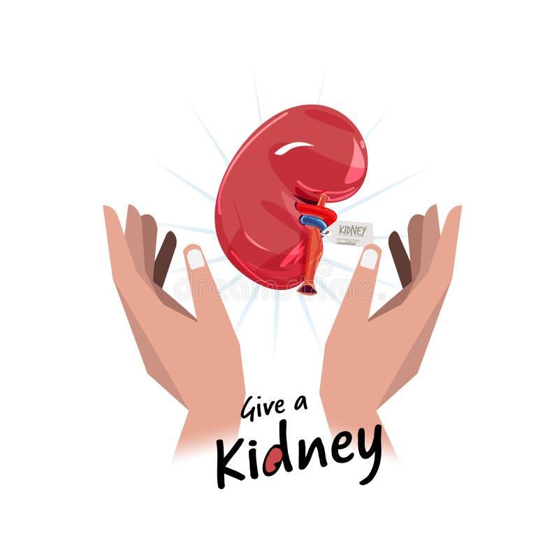 Mão com rim esperança para o conceito da doação de órgão - vetor ilustração stock