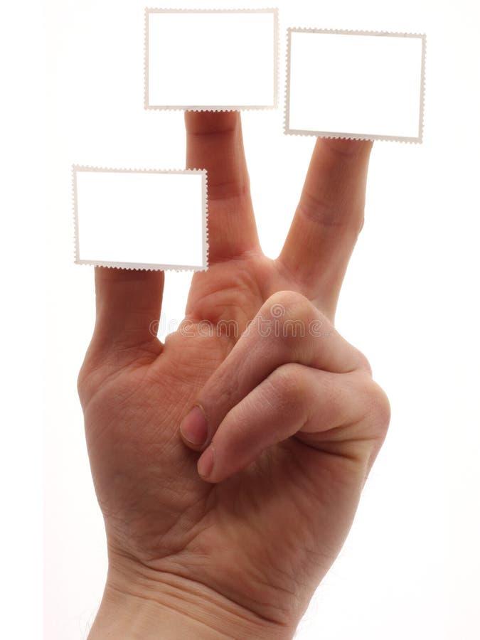 Mão com selo fotografia de stock royalty free