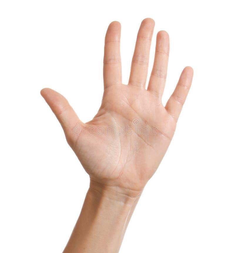 Mão da exibição da mulher no fundo branco fotos de stock royalty free