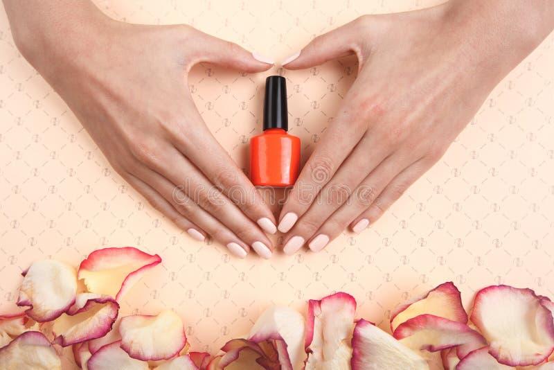A mão da jovem mulher bonita com o tratamento de mãos perfeito que faz o coração no fundo cor-de-rosa com brilho estilo liso  foto de stock royalty free