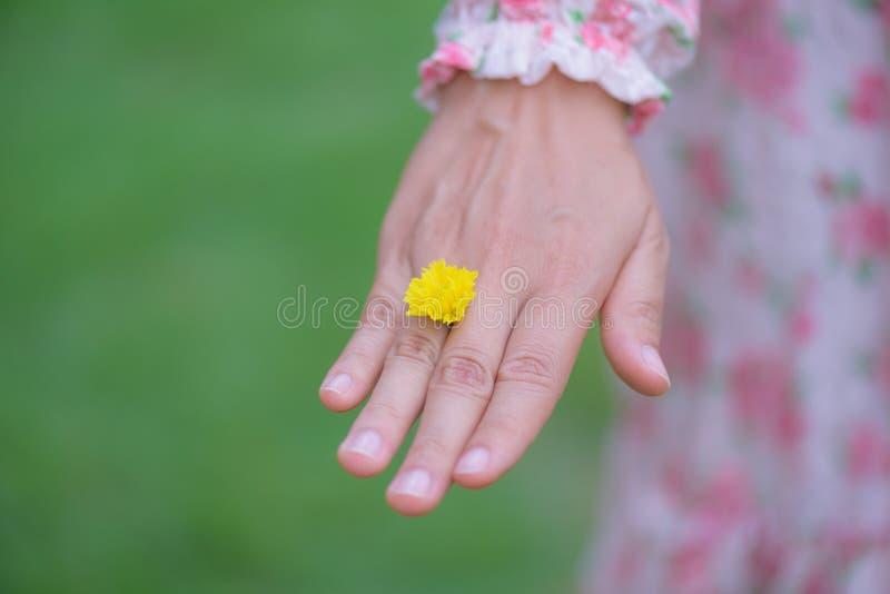 Mão da jovem mulher que veste a flor amarela fotos de stock royalty free