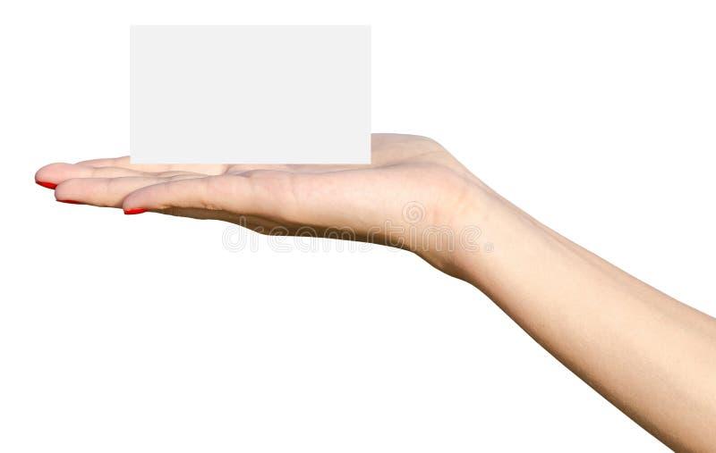 A mão da moça guarda o cartão branco vazio fotografia de stock