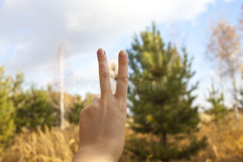 A mão da mulher é o número dois imagem de stock royalty free