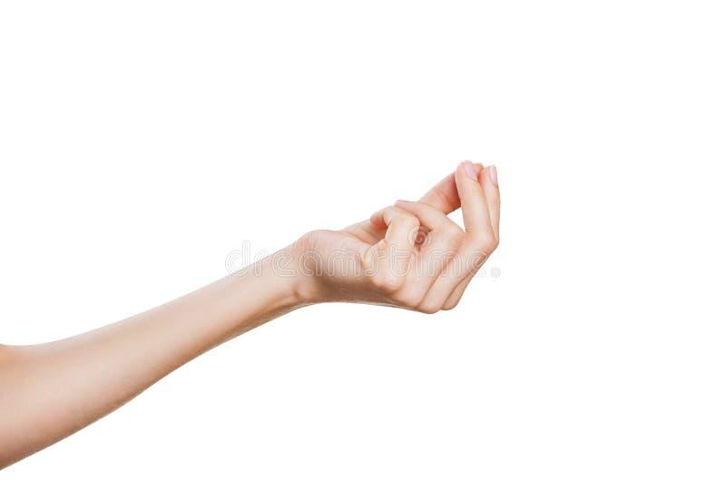 Mão da mulher imagens de stock royalty free