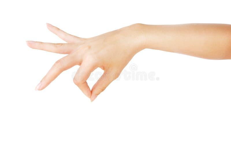 Mão da mulher que guarda algo fotografia de stock