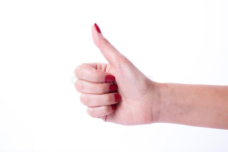Mão da mulher que guarda artigos fotos de stock royalty free