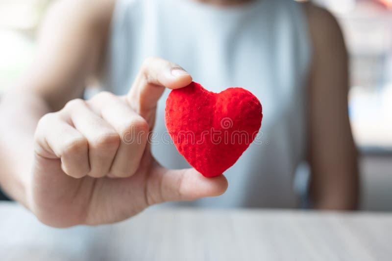 Mão da mulher que guarda a forma vermelha do coração no escritório Amor, feriado feliz do dia de Valentim e conceito saudável do  foto de stock
