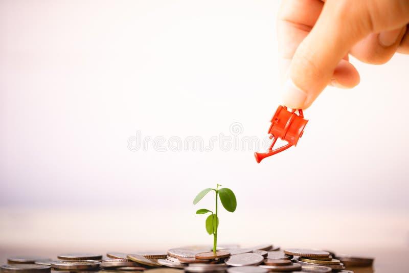 Mão da mulher que guarda a lata molhando vermelha com pilha do dinheiro e a plântula na parte superior fotografia de stock royalty free