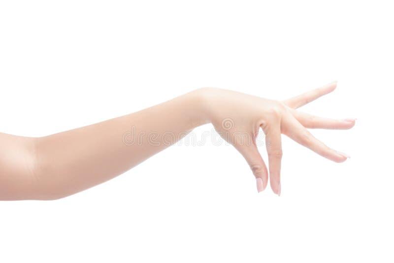 Mão da mulher que guarda o objeto foto de stock