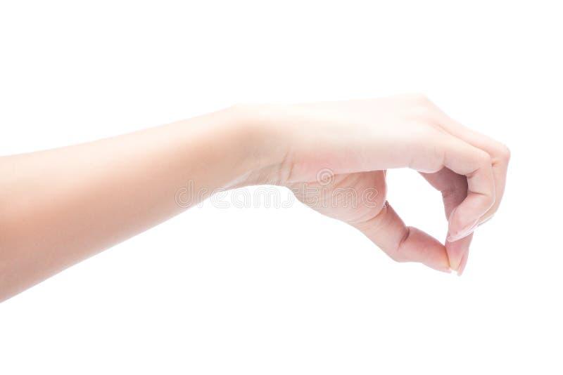 Mão da mulher que guarda o objeto imagem de stock
