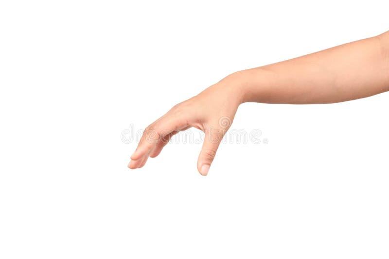 Mão da mulher que mantém artigos isolados no fundo branco foto de stock royalty free