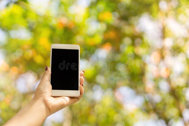 Mão da mulher que mantém a tela vazia do telefone esperto exterior com o colorido do fundo do bokeh do sumário da natureza fotografia de stock