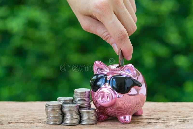 Mão da mulher que põe a moeda no mealheiro cor-de-rosa lustroso com a pilha de imagem de stock