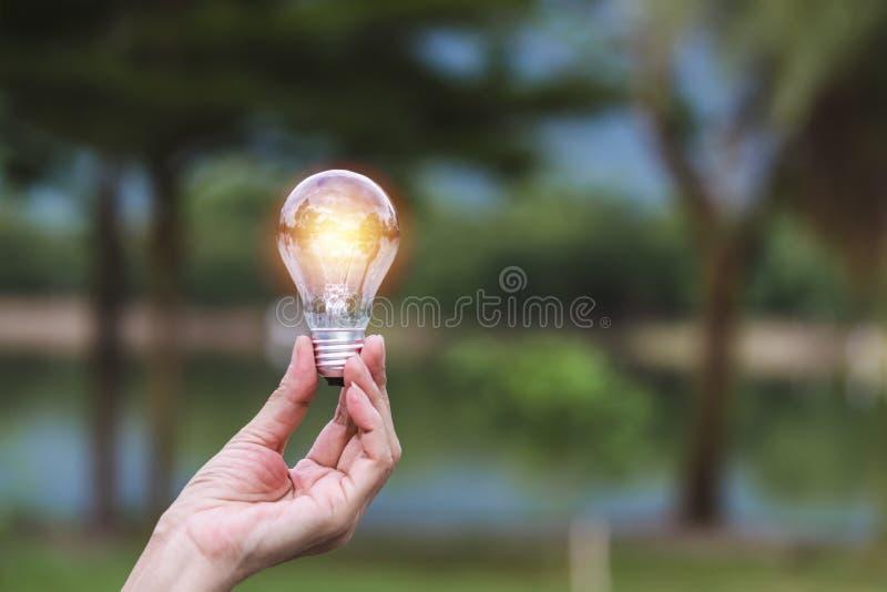 Mão da pessoa que guarda a ampola no fundo para solar, energia da natureza, conceito da ideia fotografia de stock