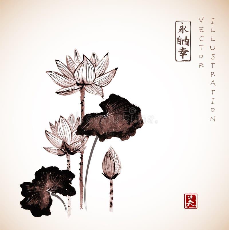 Mão das flores de Lotus tirada com tinta ilustração stock