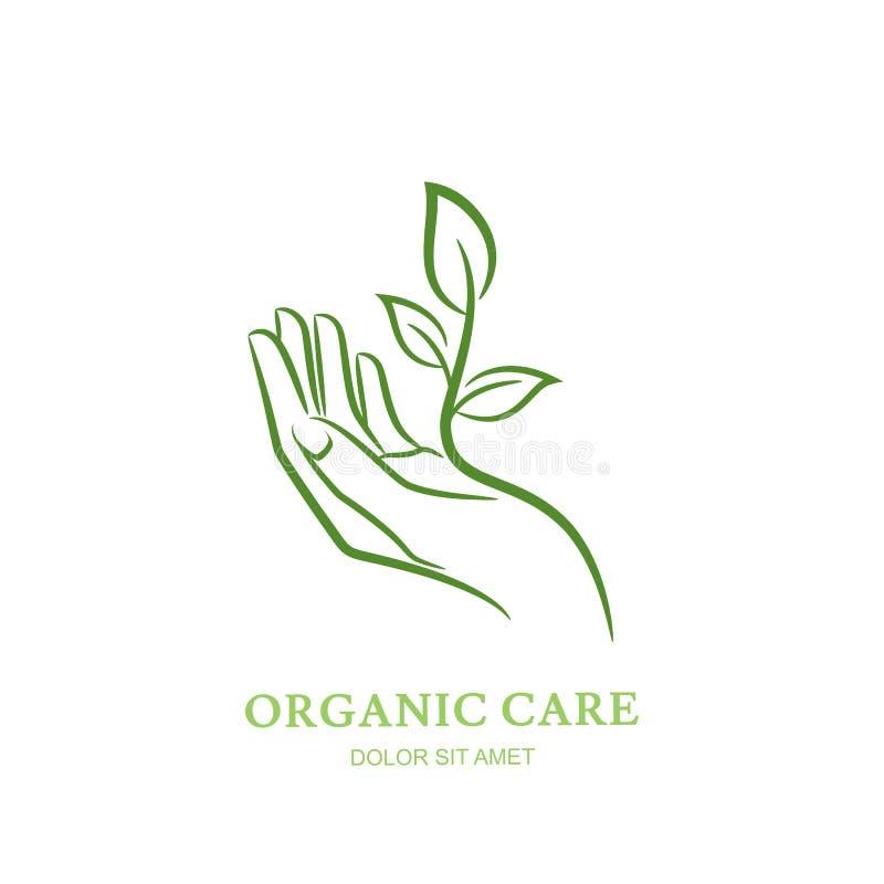 A mão das mulheres com planta verde e folhas Vector o logotipo, etiqueta, elementos do projeto do emblema ilustração stock