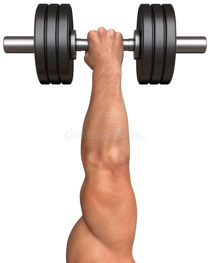 A mão de homem forte com um peso imagens de stock
