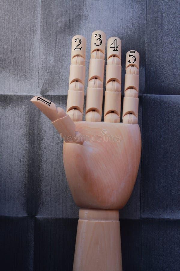 A mão de madeira com cinco dedos aumentou e numerou com números um, dois, três, quatro e cinco fotos de stock royalty free