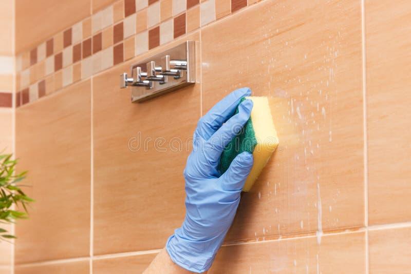 Mão de telhas superiores da limpeza da mulher no banheiro usando a esponja com detergente, conceito dos deveres do agregado famil fotografia de stock royalty free