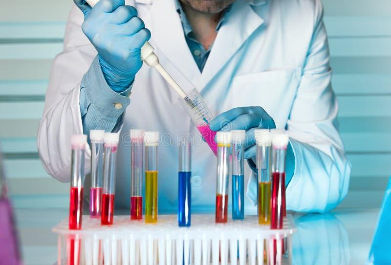 A mão de um cientista que introduz com pipeta amostras nos tubos testa fotos de stock royalty free
