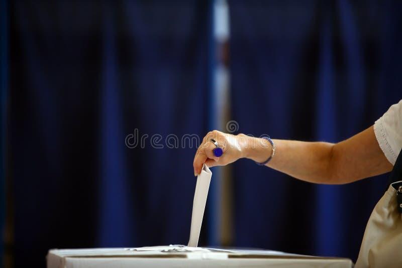 Mão de votação fotos de stock