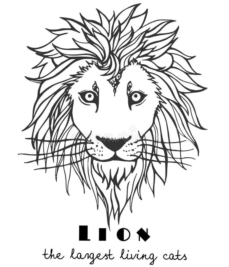 Mão decorativa preto e branco leão tirado ilustração do vetor