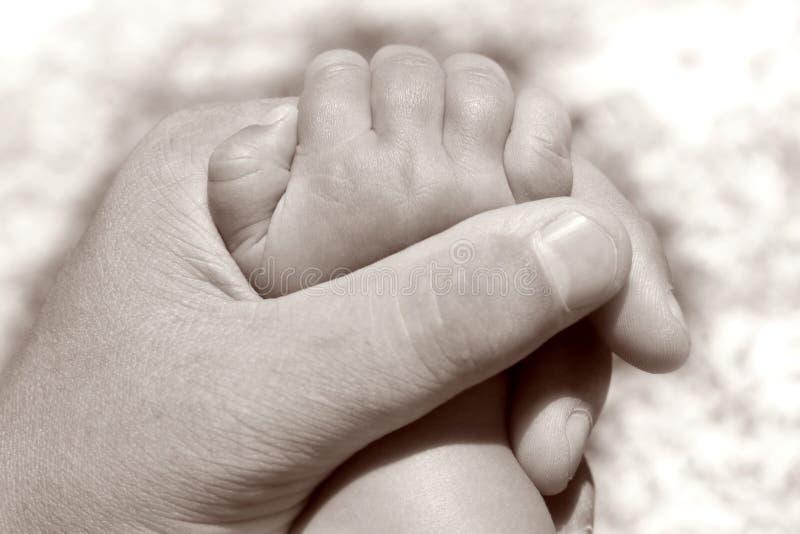 Mão do bebê da terra arrendada do pai imagens de stock
